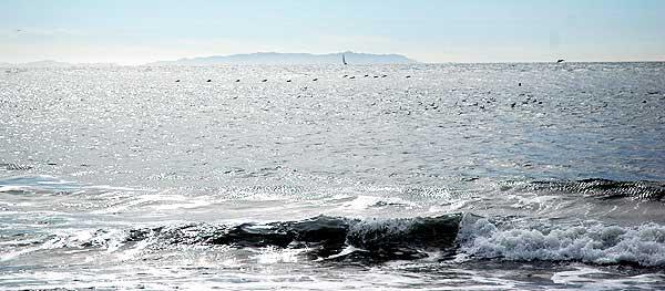 Catalina from Playa del Rey - January 19, 2006