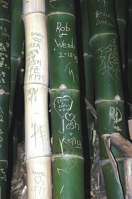 Graffiti, Mildred E. Mathias Botanical Garden