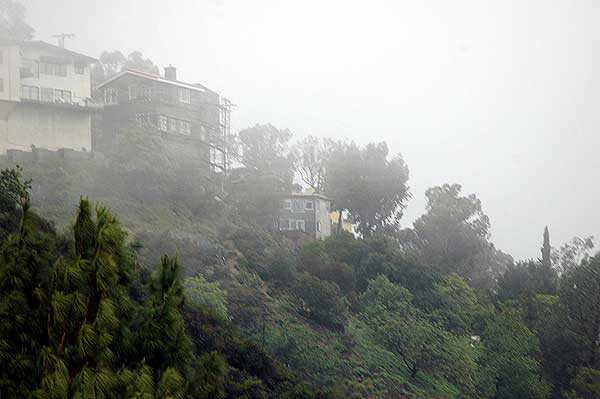 Fog in the Hollywood Hills, Laurel Canyon