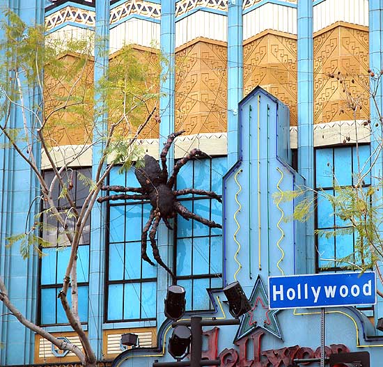 Spider on Hollywood Boulevard