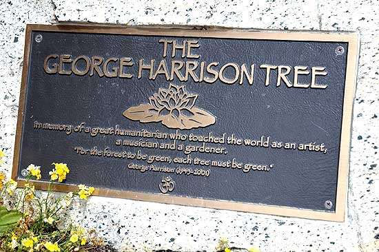 The George Harrison Tree in Griffith Park (marker)