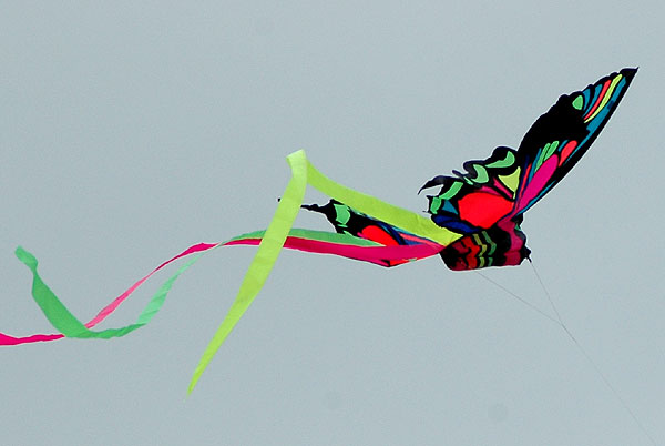 The Thirty-Second Annual Festival of the Kite