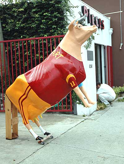 UCLA-USC Cow on Melrose