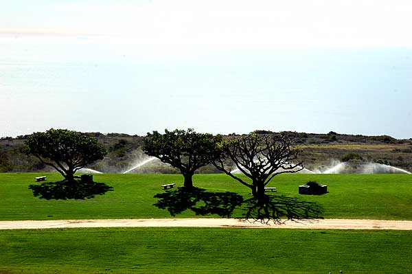Alumni Park, Pepperdine University, November 2005