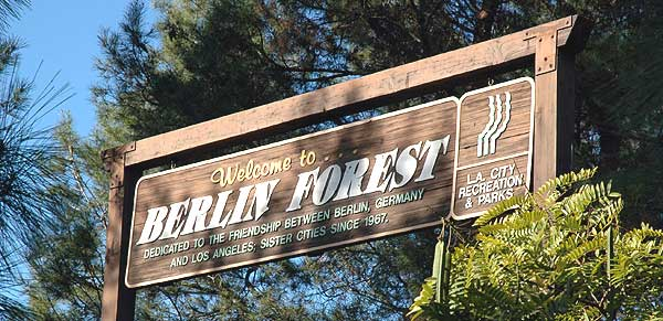 Los Angeles - Berlin Forest in Hollywood
