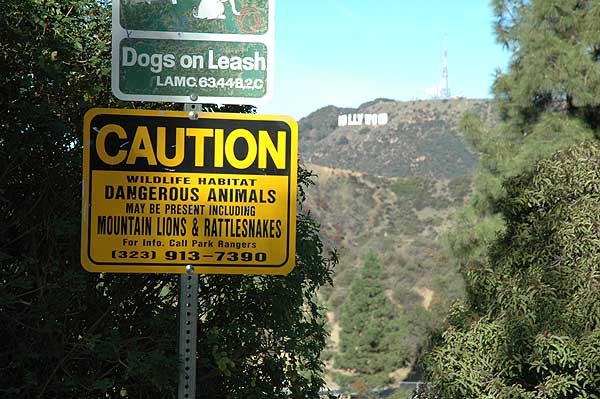 Hollywood warning sign and Hollywood Sign