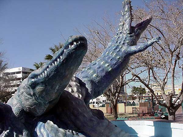 Alligators in El Paso?