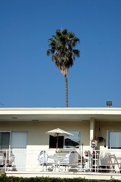 Ironic Hollywood above the pool ,,,