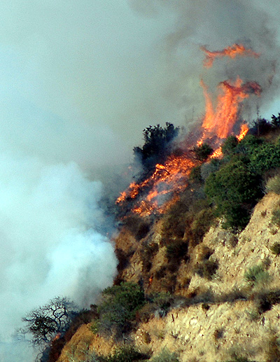 Nichols Canyon fire, August 9, 2005