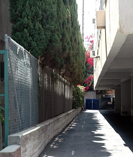 Hollywood garage doors  -
