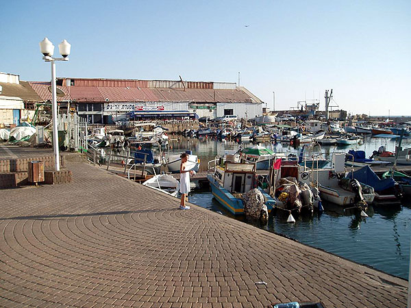 Jaffa harbor and its few fishing boats -