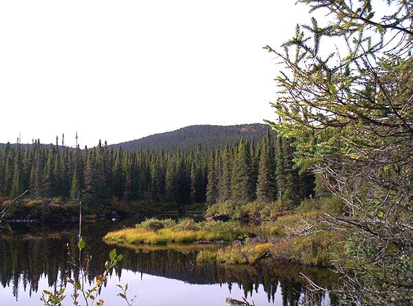 Northern Ontario - Hunting Trip
