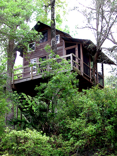 The Treehouse, Summer 2003
